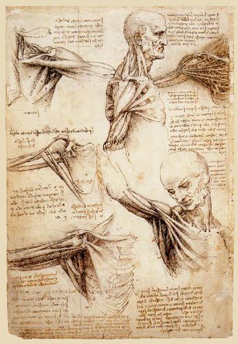 Leonardo da Vinci   elmentiderodemielost